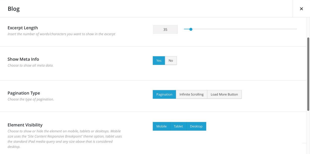 Avada WordPress Theme | Additional Characteristics