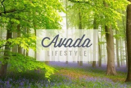 Diseño Web Modo de Vida | LifeStyle Madrid