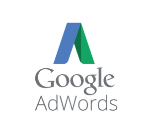 Google AdWords | Advertisements in Google Search Results