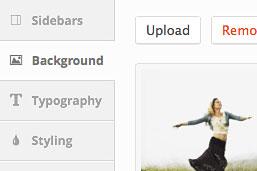 Diseño Web | WordPress | Avada | Opciones de Tema